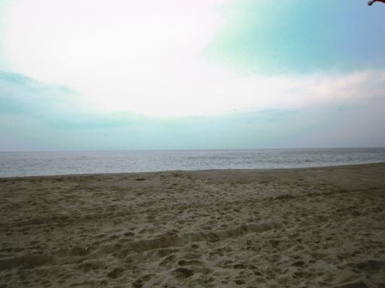 Delaware Seashore State Park : Beautiful beaches!