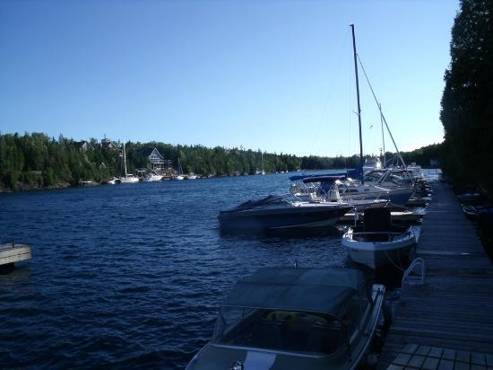 Big Tub Harbour Resort: The backyard view