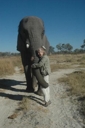 Sanctuary Baines' Camp: Getting a hug at the elephant experience