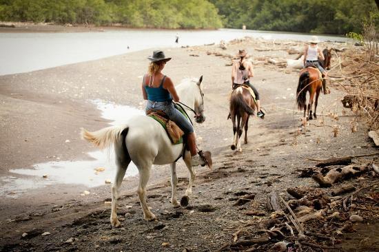 Costa Rica Yoga Spa: Horse tour