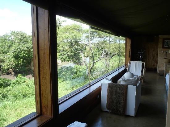 Singita Faru Faru Lodge: View