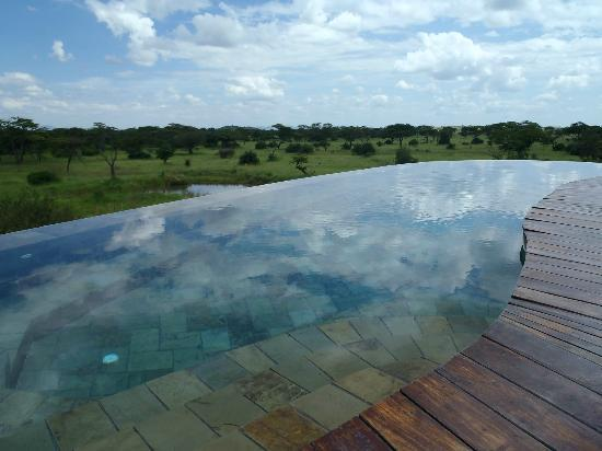 Singita Faru Faru Lodge: Infinity pool
