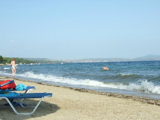 Blue Dolphin Resort Hotel: sea at afternoon