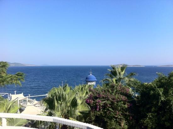 Blue Dreams Resort: oda balkonuna ait manzara
