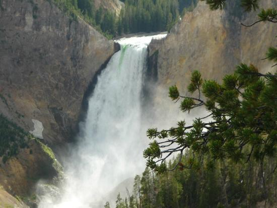 Yellowstone River: Cascada de Río de Yellowstone