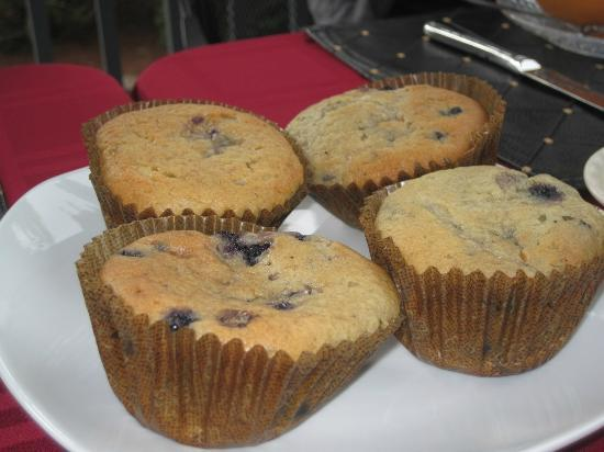 Captain's Manor Inn: Delicious blueberry muffins