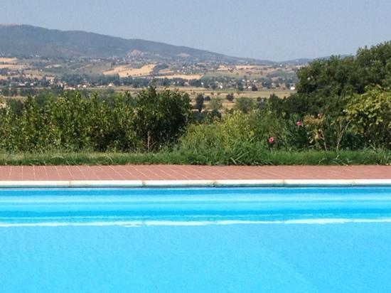 Casa Giulia Country House: la piscina!