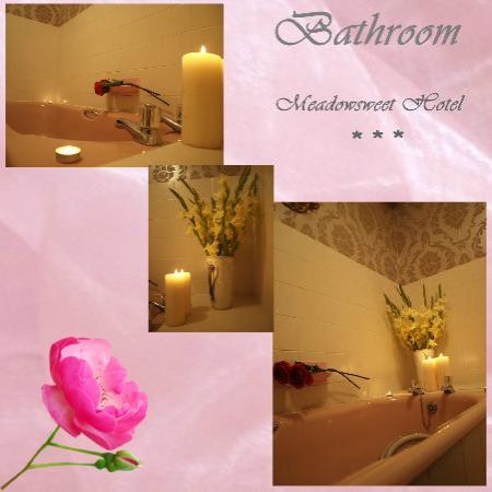 The Meadowsweet Hotel: Bathroom available for our guests