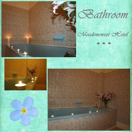 The Meadowsweet Hotel: Second bathroom available for our guests