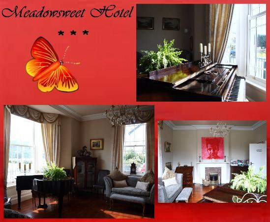 The Meadowsweet Hotel: Our guest lounge, also available to hire