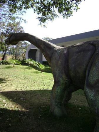 Natural Sciences Museum: Dinossauro no jardim
