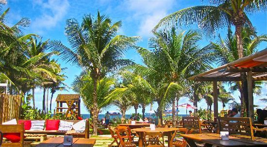 Barraca do Loro: Vista do restaurante.