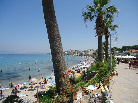 Ladies Beach: The whole area is very cosy and nice, a bit like Riviera