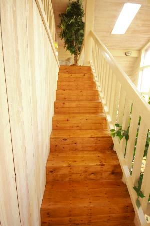 Noisy Water Lodge: stairs to the upstairs room 