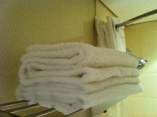Garden Court East London: well arranged towels
