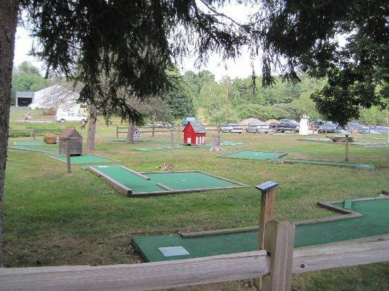 Flat Rock Bridge Family Camping : mini golf in need of update/cleaning
