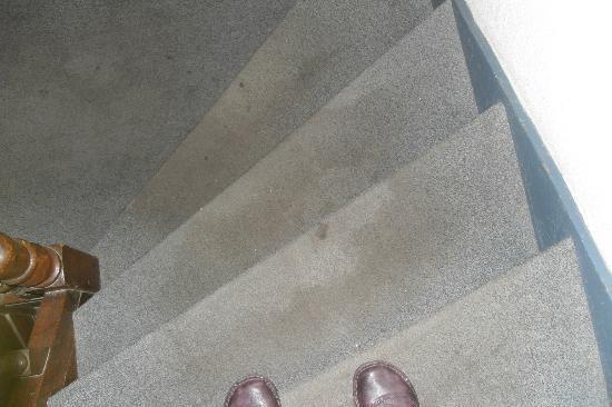Le Voltaire : escaliers du rdc au 1er
