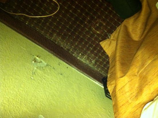 Ramada by Wyndham West Atlantic City: the filthy floors