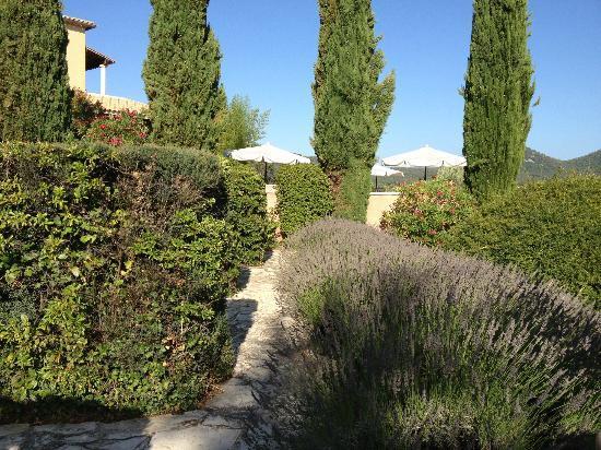 Hotel Restaurant Bellerive : La piscine derrière Cyprès et Parasols