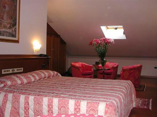 Hotel Piroga Padova : Camera tipo