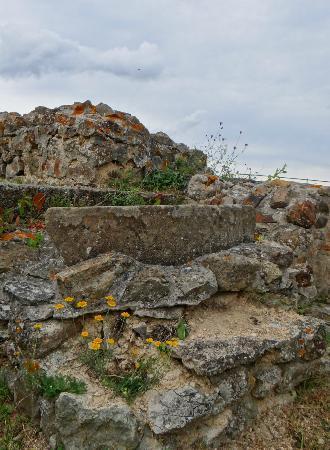 Kyrburg, Whisky-Museum und Restaurant: castle ruins