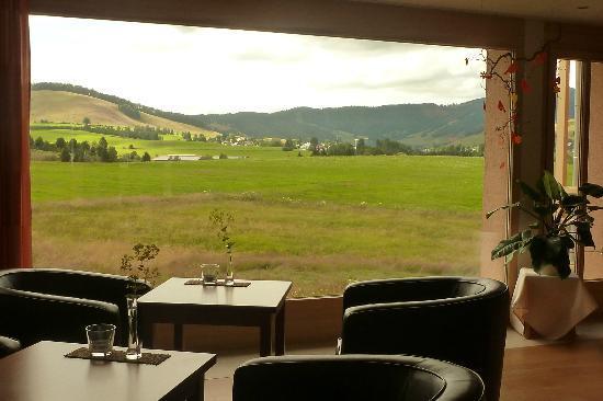 Breggers Schwanen: View from the bar