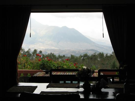 Ali Shungu Mountaintop Lodge: View out living room window