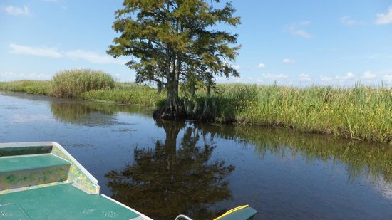 Airboat Express - Tours