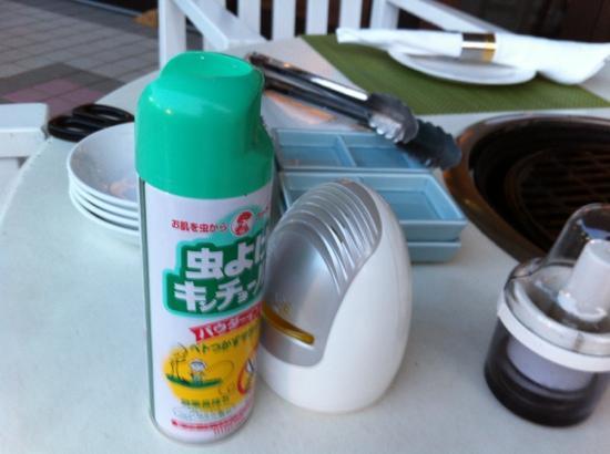 Radisson Hotel Narita: 虫除けの気配りもありました