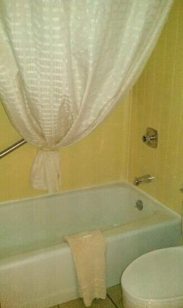 Best Western Angus Inn: Shower