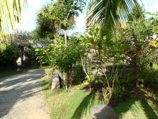 Bali Aroma Exclusive Villas Seminyak: Common grounds