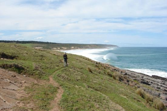 Austiny Bed and Breakfast Accommodation: beautifyl coastline along Heysen Trail