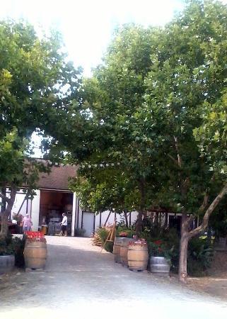 Yountville, CA: Hopper Creek