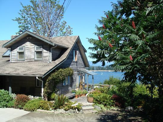 Quadra Island Harbour House B&B : View from front side toward the water