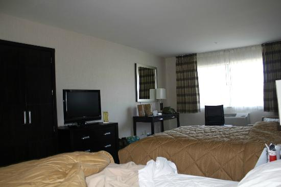 Comfort Inn & Suites Zoo / SeaWorld Area: TV/Desk