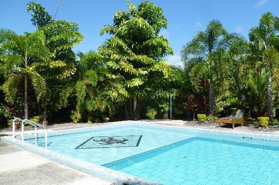 Pasefika Inn: Pool