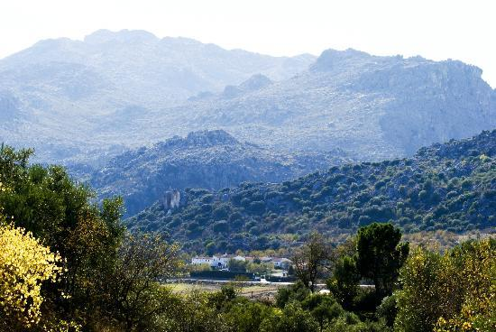 Cortijo Fuente Marchal: location