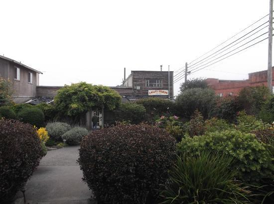 Loleta Cheese Factory : View of Cheese Factory from Garden Area