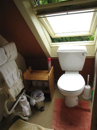 Glencairn Bed and Breakfast: very small bathroom