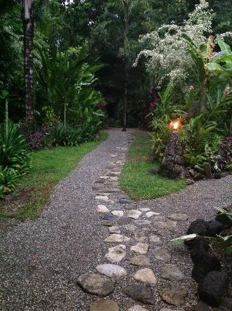 Ojo del Mar: a view of the lovely garden