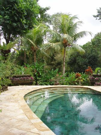 Warwick Ibah Luxury Villas & Spa: the pool - small but perfectly formed