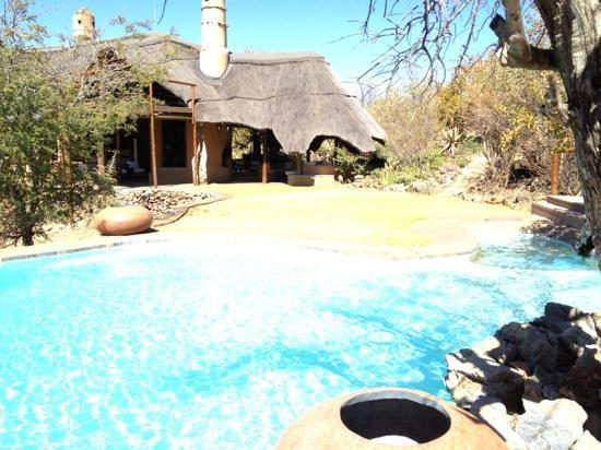 Royal Madikwe Luxury Safari Lodge: The gorgeous main pool