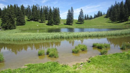 B&B Le Choucas: lac de Conches
