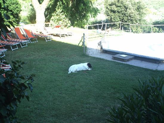 """SS.Annunziata II: Relax per """"tutti"""" a bordo piscina"""