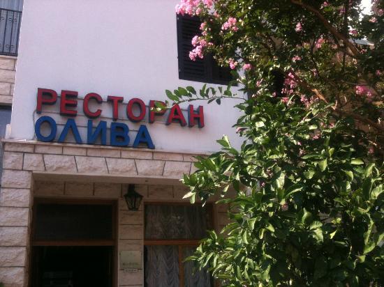 Hotel Oliva: entrance