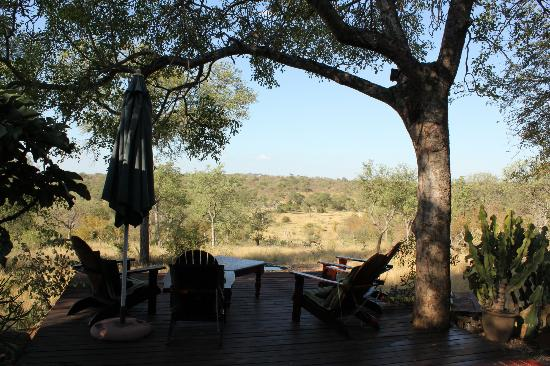 Leopards View Game Lodge: Viewing deck