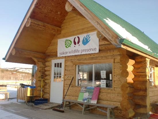 Yukon Wildlife Preserve : Office