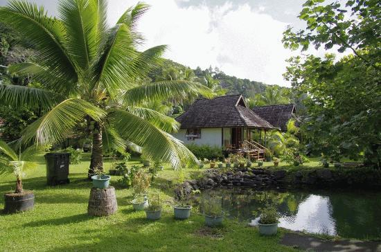 Pueu Village: Le bassin aux poissons