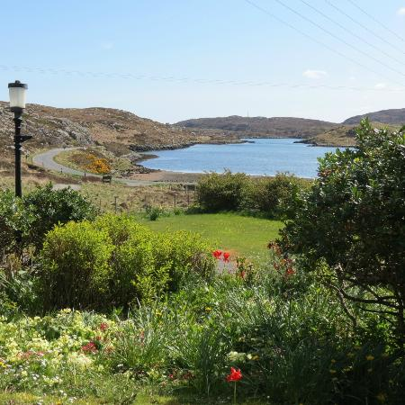 Isle of Barra, UK: Garden at Northbay House