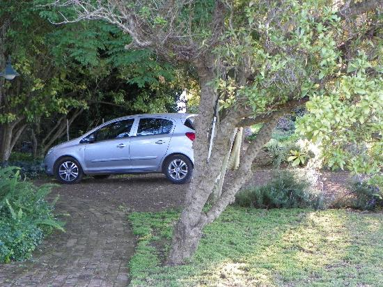 Lupus Den Country House: Parking